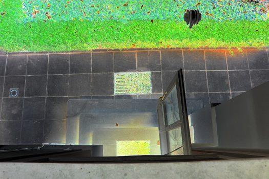 Garten von oben, invertiert