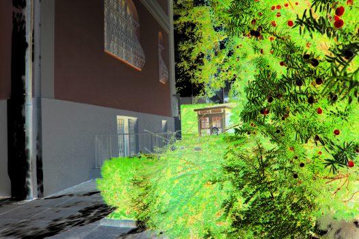 Vom Gartentor zur Eingangstür